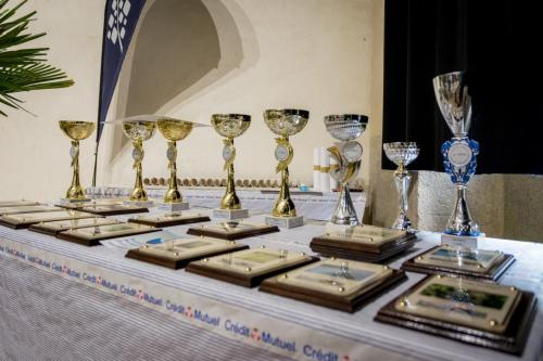 16 Coupes et trophées